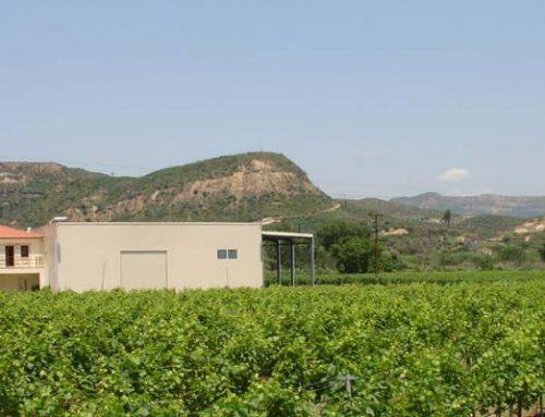 Olympia Winery